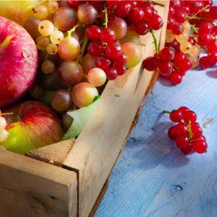 Le vitamine della Frutta una vera cura per il nostro organismo!